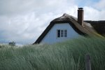 dach z trzciny