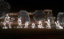 dekoracje świąteczne, lampki w ogrodzie